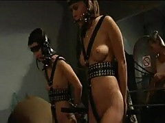 Slave huntress 2